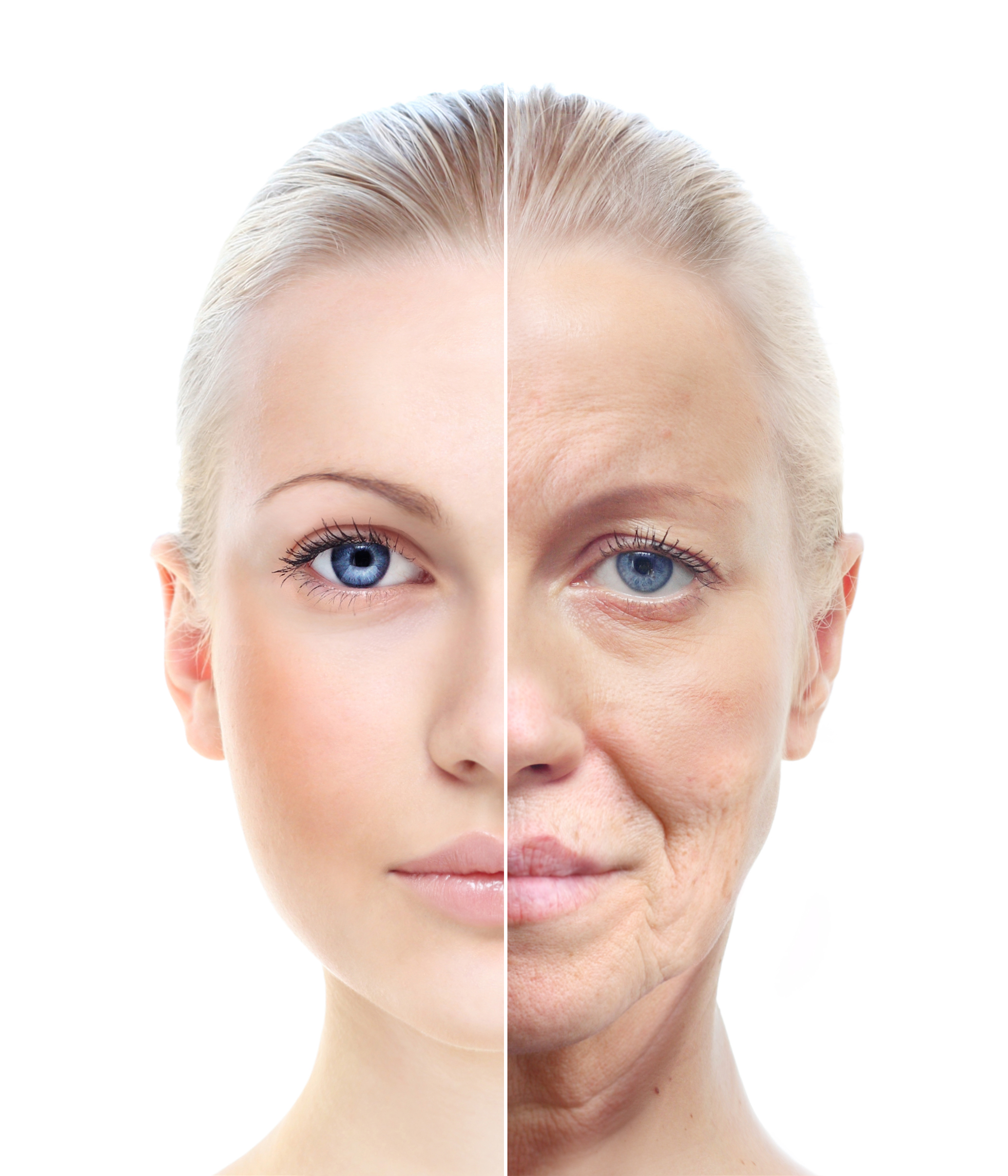 Collagen is the Fountain of Youth